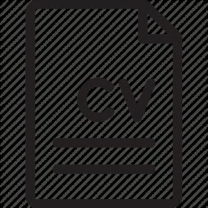 thin-081_file_document_cv_curriculum_vitae-512